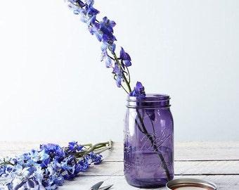 Mason Jar 16 onzas // Boca regular // Púrpura o Verde // American Heritage Collection