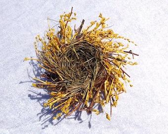 Birds nest Birdsnest 4 Inches Scrapbooking Embellishments Wreaths Craft Supplies