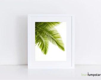Palm Leaf Decor, Palm Leaf, Palm Print, Palm Print Art, Palm Leaf Art, Palm Leaf Print, Palm Leaf Wall Art, Greenery Print, Tropical Print