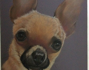 Custom pet portrait of Roxie