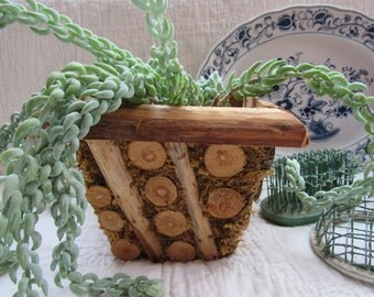 Wood and Moss Planter Pot Boho Succulent or Flower Vintage Wood Slice Container