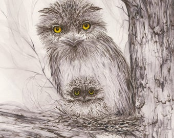 FINE ART PRINT / Tawny Frogmouth 2 / Limited Edition / Artwork / Pen and Ink / Bird Art / Owls / Drawing