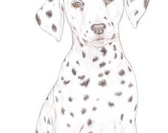 Dot the Dalmatian - Birthday Card