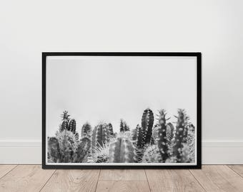 Black And White Photo - Cactus Print, Digital Download, Grey Decor, Living room Wall Art, Succulent Print, Large Printable, Minimalist Art