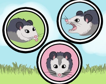 Opossum pin set