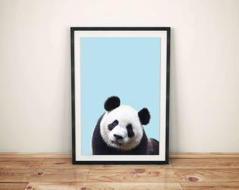Printed Panda Wall Art-Printed Baby Bear Art-Bear Nursery Wall Decor-Bear Printed Art-Childs Print