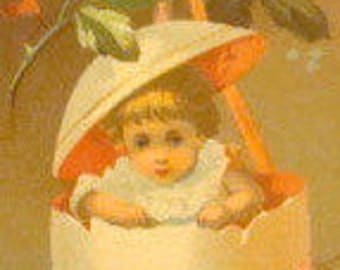 Victorian Scrap (Child in an Egg)