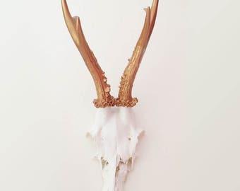 Antler deer bronze 001