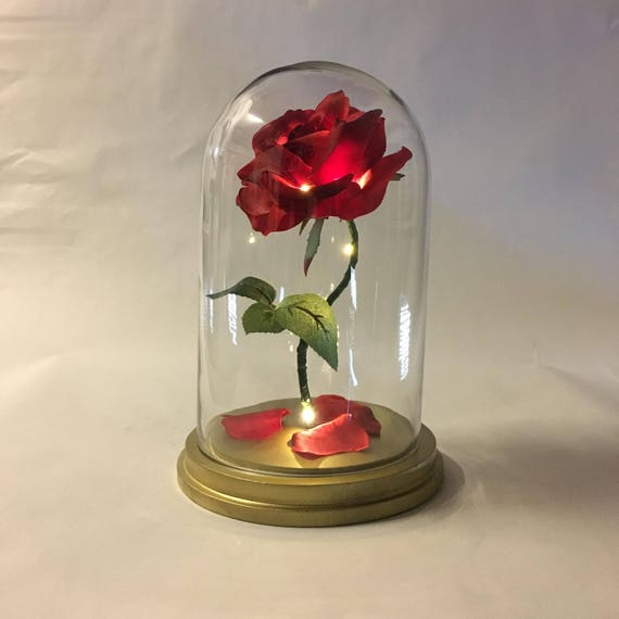 Beauty and the beast rose enchanted rose rose in glass dome for Rose under glass