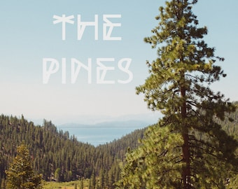 Landscape Print, Fine Art Photo, Pine Tree Print, Lake Tahoe Art, Mountains, Blue, Typography, Into The Pines, Wall Art, Woods, Resort Art