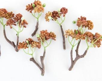Fake Succulents - 6 Sedum Stem Bunches in Brown Tones - faux succulents, artificial sedum - ITEM 0247