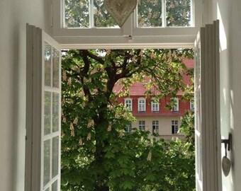 Amazon Kindle Book eBook Cover Artwork Open Window Scene Tree Brick Building