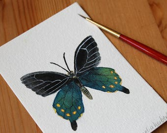 Original Watercolour Painting - Nature Study No.1 Butterfly