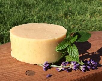 Mint City Soap - Spearmint Oatmeal Milk Soap