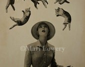 It's Raining Cats Retro Surreal Paper Collage Cat Wall Art Print 8.5 x 11 Inch