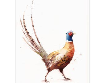 Pheasant - Original Watercolor Bird Painting 11 x 14 inches Nature Wild