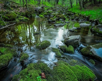 Nature Photography, Spring Creek, Green Mossy Rocks, Forest, Fine Art Print, Silky Water, North Wisconsin, Woodland, Fairy Land, Magical