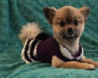 Hmoob Phuav Ntxoom Suab Inspired Dog Dress (Size: XS)