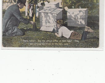 Father At Bee Hives With Children, Explains What Is Going On These Hives Antique Postccard