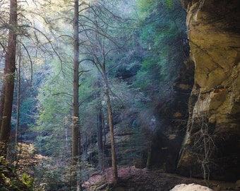 Nature, Color, Photography, Fine Art, Home Decor