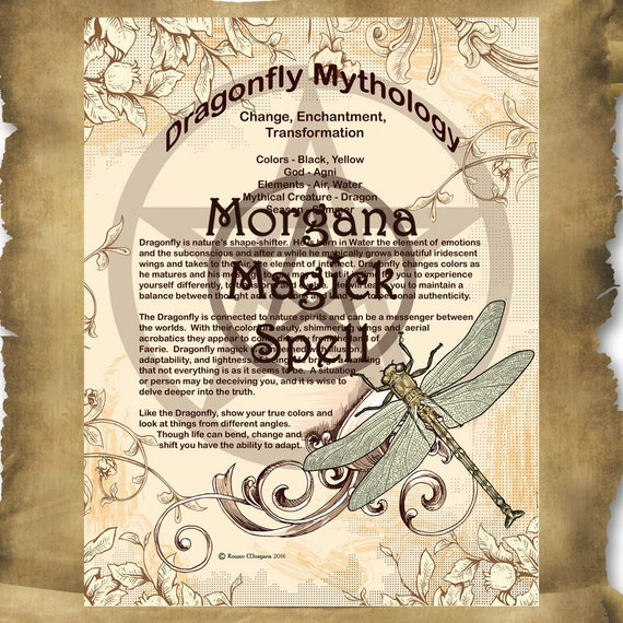 DRAGONFLY MYTHOLOGY