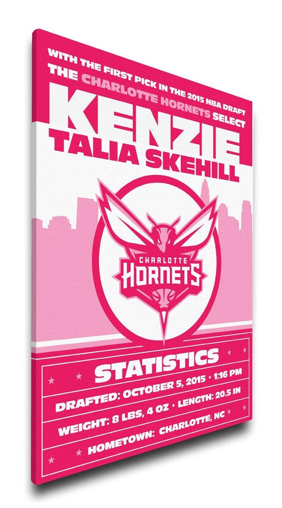 Charlotte hornets personalized baby gift canvas birth charlotte hornets personalized baby gift canvas birth announcement negle Gallery