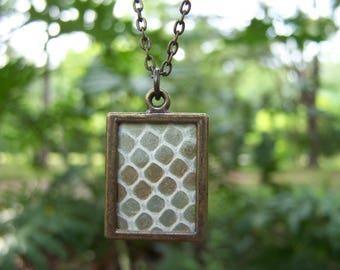 Snake Shed Skin Necklace Antique Bronze
