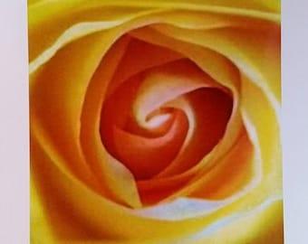 Yellow Rose Card 5x7