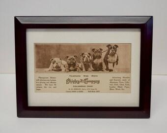 Bull Dog Shipley & Company Columbus Framed Post Card