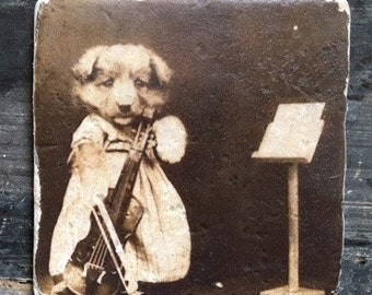 SAMPLE SALE: Vintage Oddities Dog with Violin Tile
