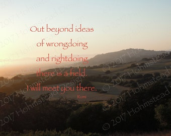 Rumi: Out beyond ideas of wrongdoing and rightdoing there is a field. I will meet you there.