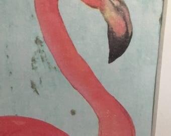 Pretty pink flamingo picture
