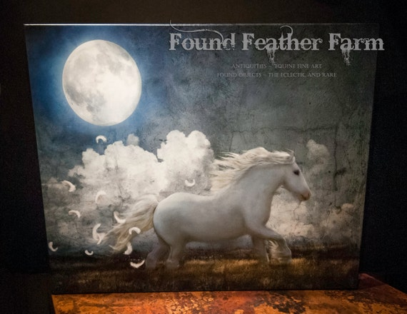 "Museum Wrapped Canvas Giclee of a Digital Art Image Titled ""White Feathered Moon"""