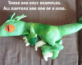 Micro-Raptors