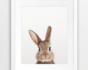 Rabbit Print, Woodland Nursery Decor, Rabbit Photo, Bunny Print, Nursery Animal Prints, Modern Art, Woodland Animal, Kids Room Printable Art
