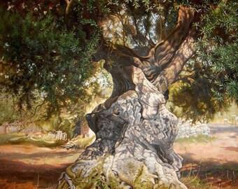Olive Tree | LARGE Classic Painting on Canvas | Original Oil Landscape | Handmade Painting | Fine art | Realism nature | original artwork