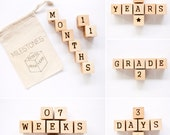 Milestone Blocks / Baby Age Blocks / Wood Baby Blocks / Baby Photo Prop / Pregnancy Photo Prop / Baby Shower Gift / Baby Month Blocks