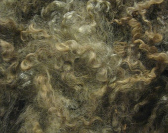 natural color Lincoln Longwool raw fleece