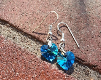 Various Drop Hook Earrings