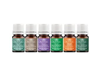 Top 6 Essential Oil Set Kit Variety 100% Pure Therapeutic Grade 5 ml. Includes Peppermint, Lavender, Orange, Rosemary, Eucalyptus, Tea Tree