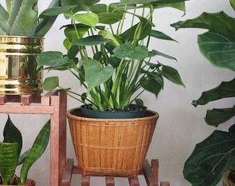 Plant Basket / Rattan Plant Basket / Vintage Plant Basket / Split Rattan Plant Basket / Vintage Wicker Plant Basket / Vintage Planter