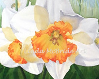 White Jonquils 3x3 gift enclosure card from my original watercolor painting with envelope.
