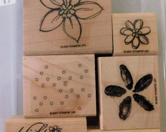 Stampin' Up! Delight in Life RETIRED stamp set