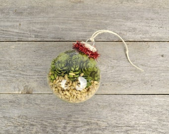 Fancy Barley & Hops Ornament with Red Tinsel Trim / Beer Lover Christmas Gift / Beer Gifts / Beer Stocking Stuffer / Pale Ale IPA Lager
