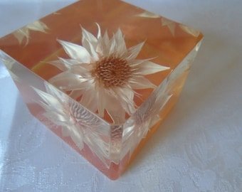 resin cube paperweight dried flower orange marble effect base
