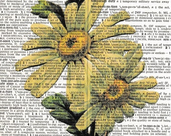 5x7 | Daisys | Flowers | Flower Print | Flower Picture | Daisy Print | Daisy's | Picture | Gift | Re-purposed Dictionary | Gift For Friend
