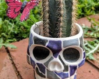 Handpainted Skull Succulent Pot