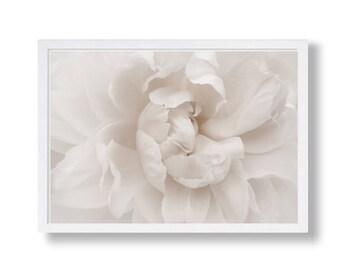 Flower Print, Flower Wall Art, Flower Printable, Flower Wall Decor, Flower Printable, Flower Poster, Flower Decor, Botanical Print, Flower