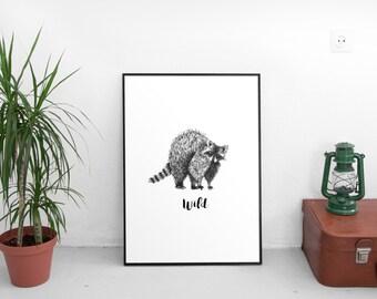 Print Ink Illustration Wild Raccon Wall Art