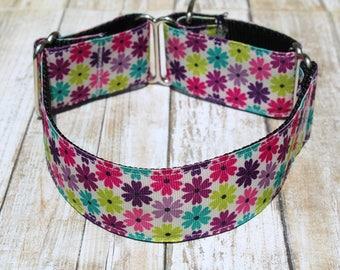 Daisy Martingale Collar - Floral Martingale Collar - Greyhound Martingale - Choker Dog Collar - Greyhound Collar - Spring Dog Collar